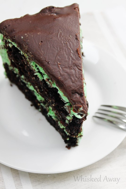 Mint Chocolate Chip Cake with Dark Chocolate Ganache